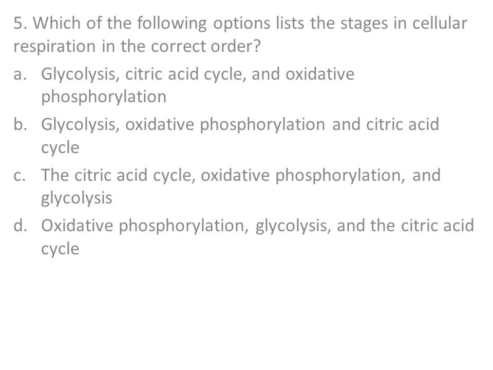 5. Which of the following options lists the stages in cellular respiration in the correct order