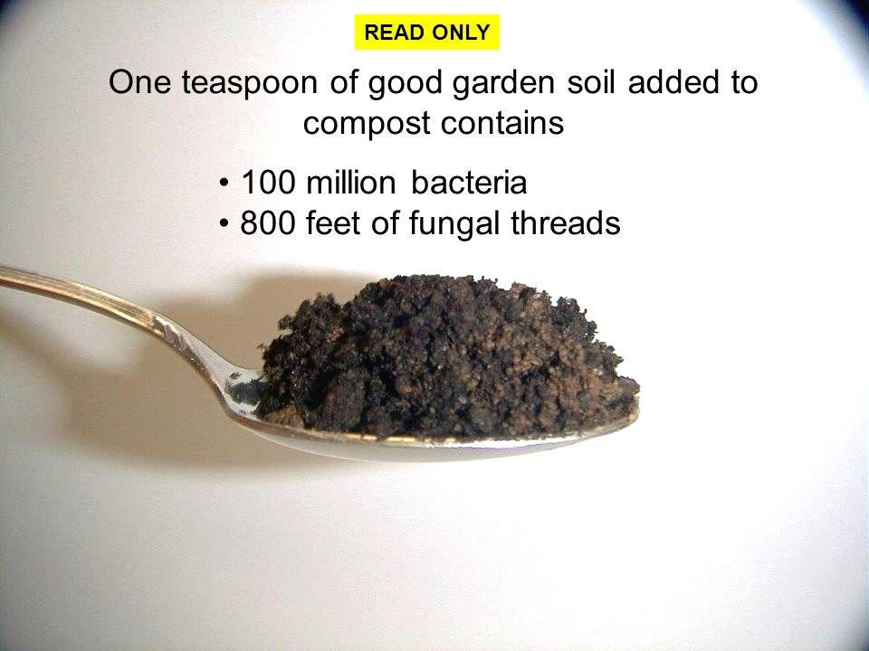 Title your page decomposition notes ppt video online for What does soil contain