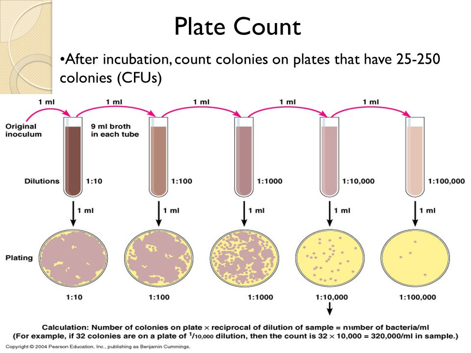 Microbial Growth Microbial growth = increase in number of cells ...