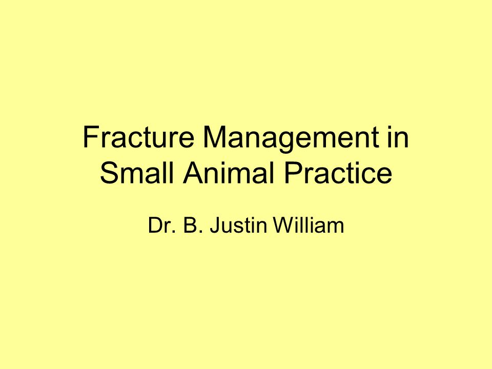 Fracture Management in Small Animal Practice