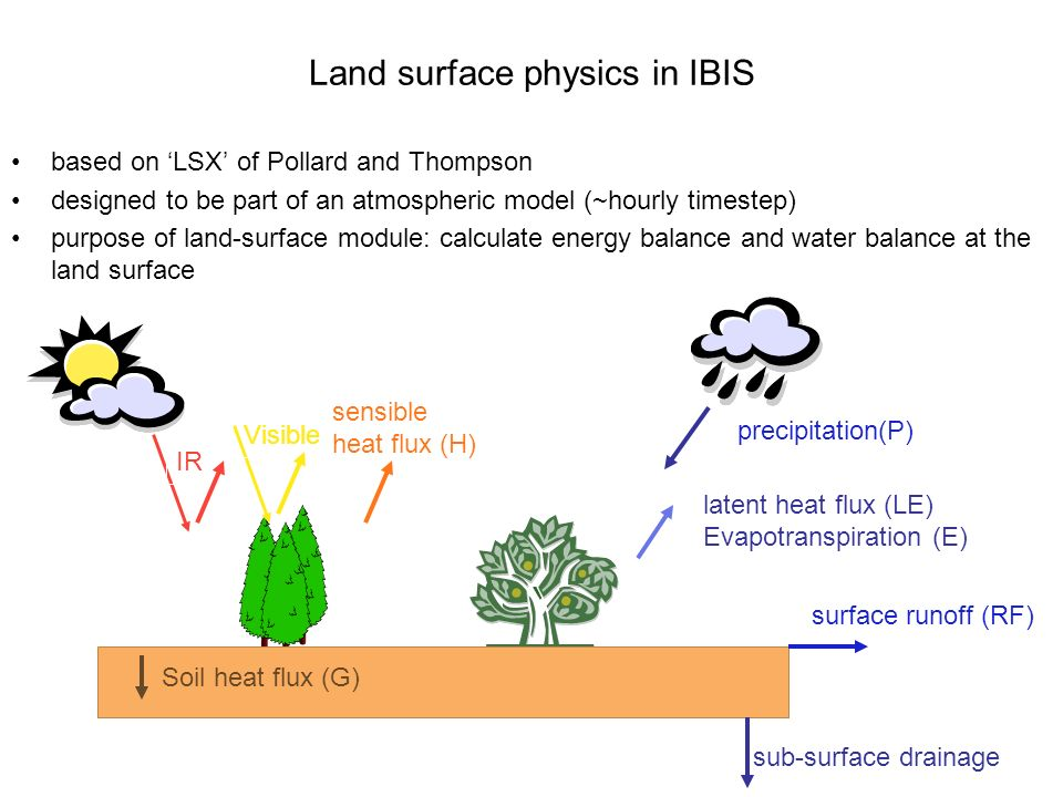 Land surface physics in IBIS