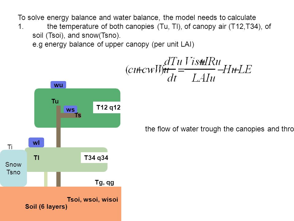 e.g energy balance of upper canopy (per unit LAI)  sc 1 st  SlidePlayer & Land surface physics in IBIS - ppt video online download