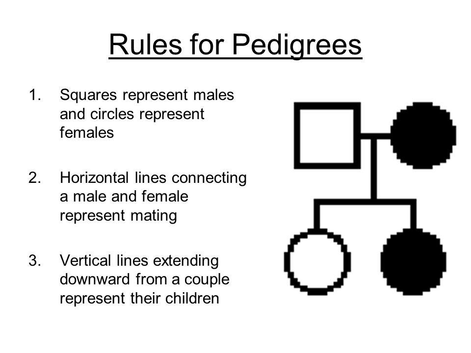 Pedigree Notes Ppt Video Online Download
