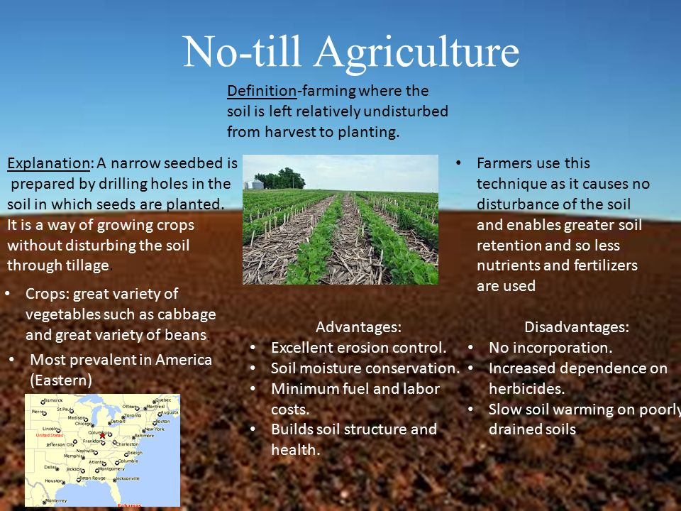 List of synonyms and antonyms of the word no till soil for Words for soil