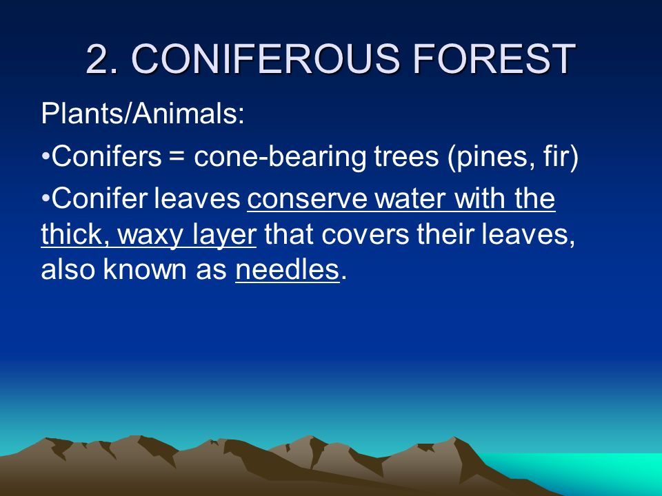 The biosphere is divided into major areas called biomes. - ppt ...