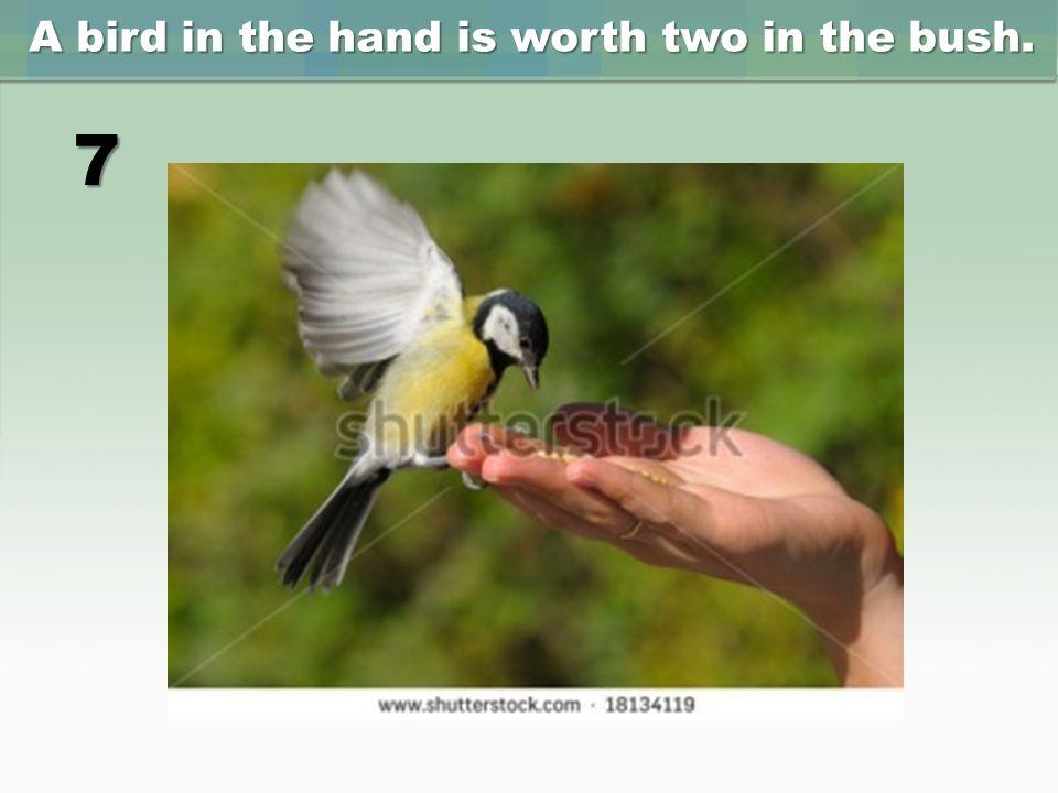 a bird in hand is worth two in the bush Übersetzung für 'a bird in the hand is worth two in the bush' im kostenlosen englisch-deutsch wörterbuch und viele weitere deutsch-Übersetzungen.