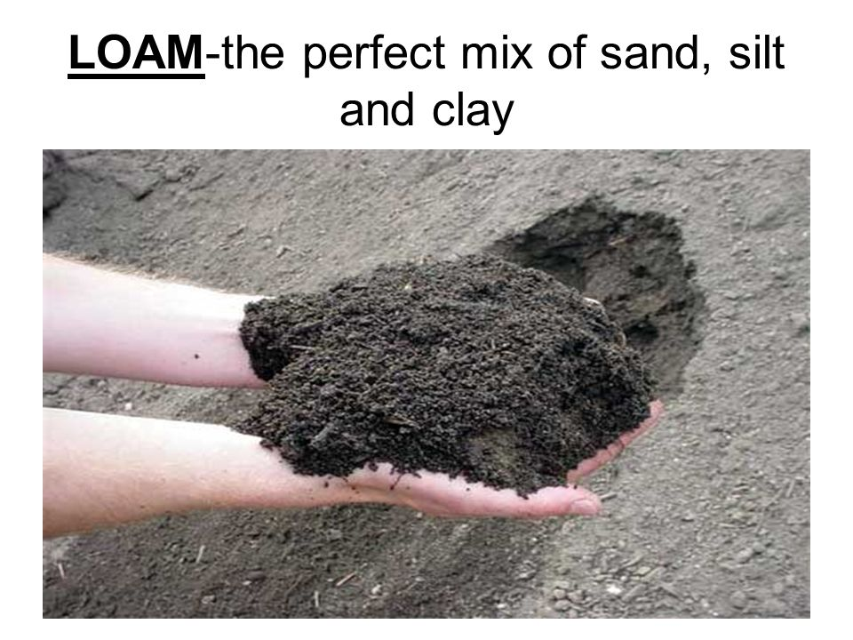 Soil made of sand silt and clay ppt video online download for Soil is made of