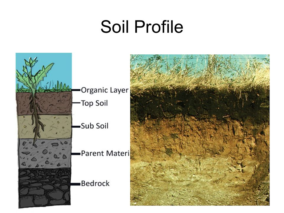 Soil made of sand silt and clay ppt video online download for Soil profile video