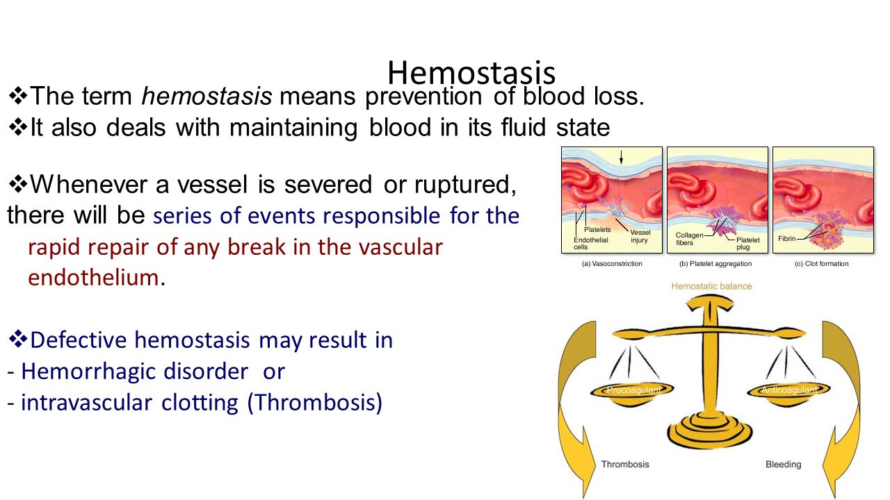 5. Hemostasis at Tarrant County College - StudyBlue