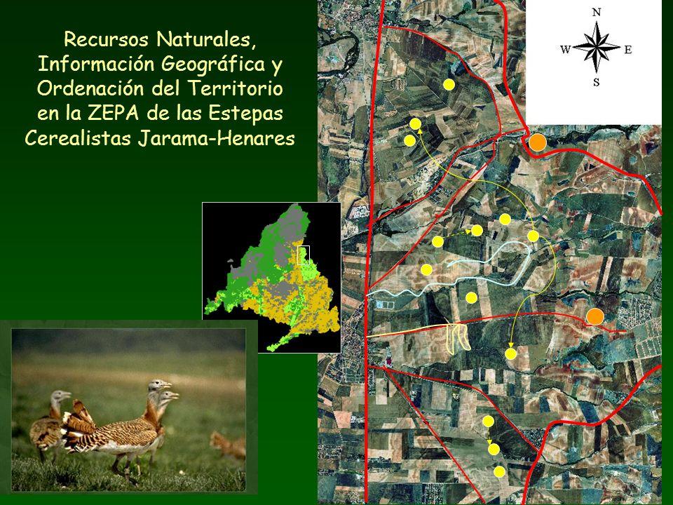 Recursos Naturales, Información Geográfica y Ordenación del Territorio en la ZEPA de las Estepas Cerealistas Jarama-Henares