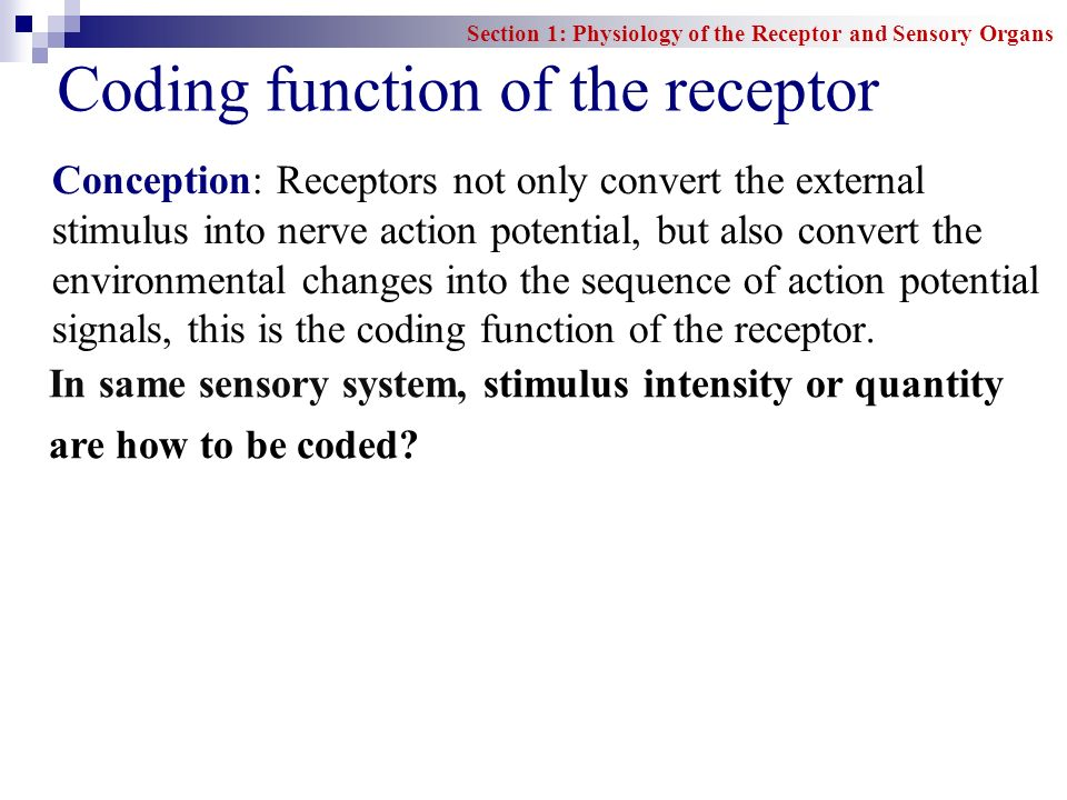 Coding function of the receptor