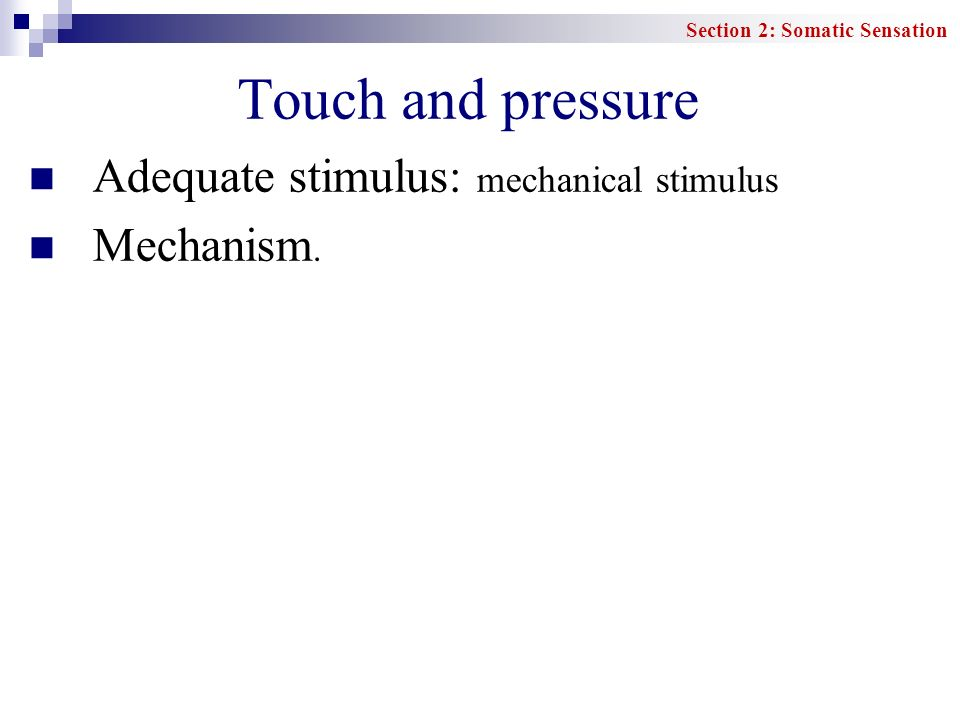 Touch and pressure Adequate stimulus: mechanical stimulus Mechanism.