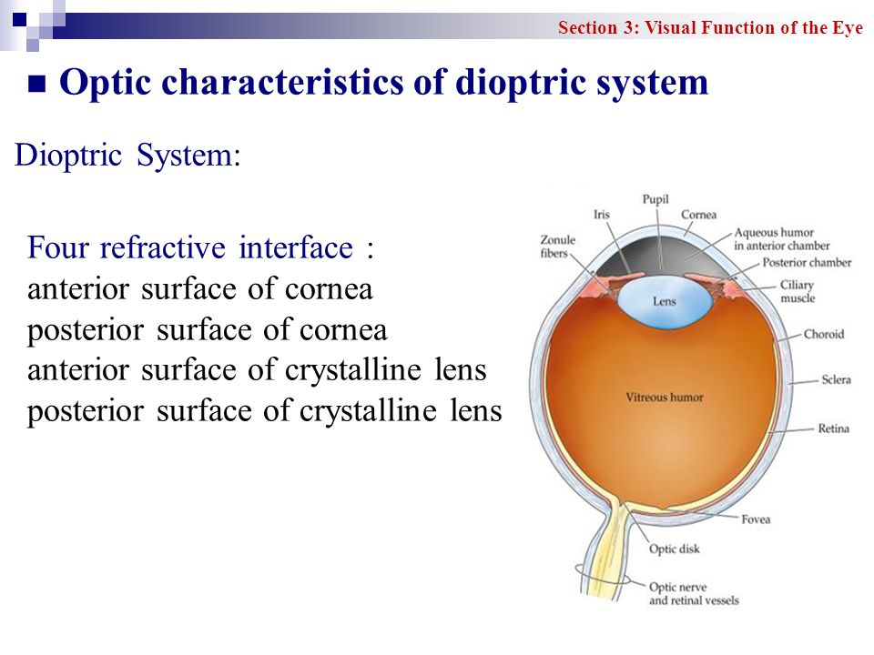 Optic characteristics of dioptric system