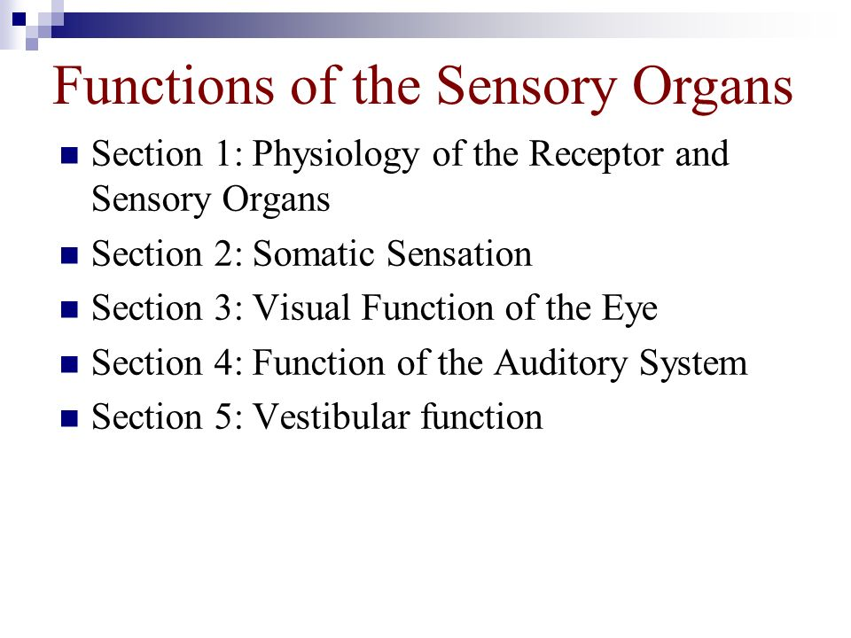 Functions of the Sensory Organs