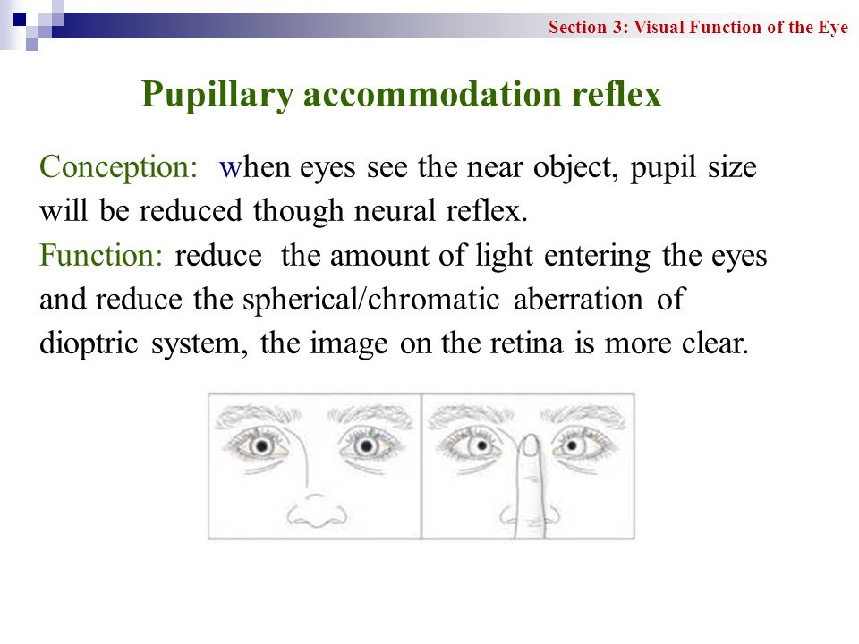 Pupillary accommodation reflex