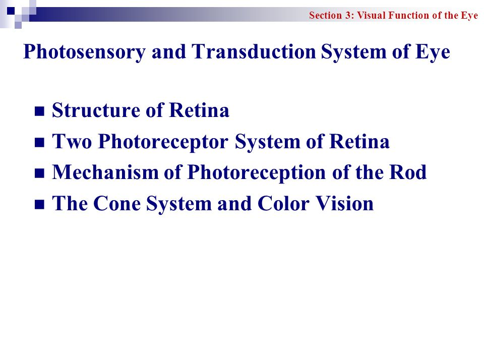 Photosensory and Transduction System of Eye