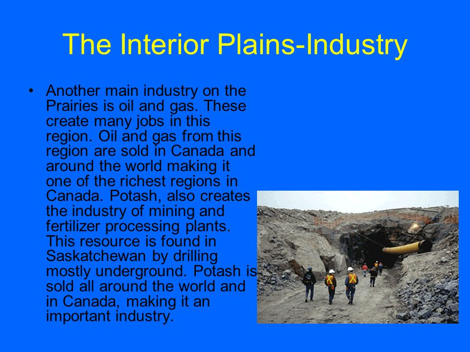 the importance of mining industry in canada The mineral exploration tax credit & the future of the mining industry in canada the exploration & mining industry in canada mining is a strategic industry for canada.