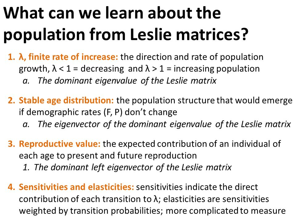 Old English Essay What Are The Disadvantages Of Population Growth How To Make A Good Thesis Statement For An Essay also Buying A Speech Benefits And Advantages Of An Increasing Population Of A Country College Term Papers For Sale