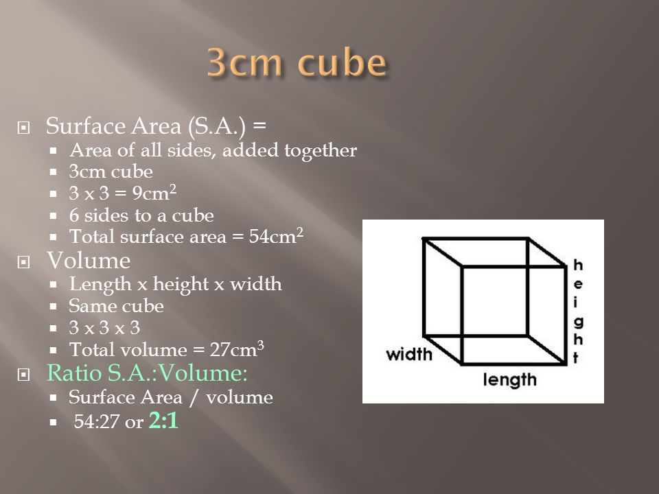 how to find the surface area of a 3cm cube