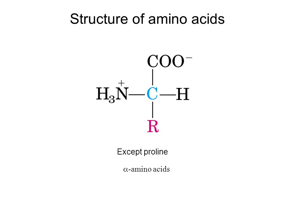 what is propanol structure amp formula studycom