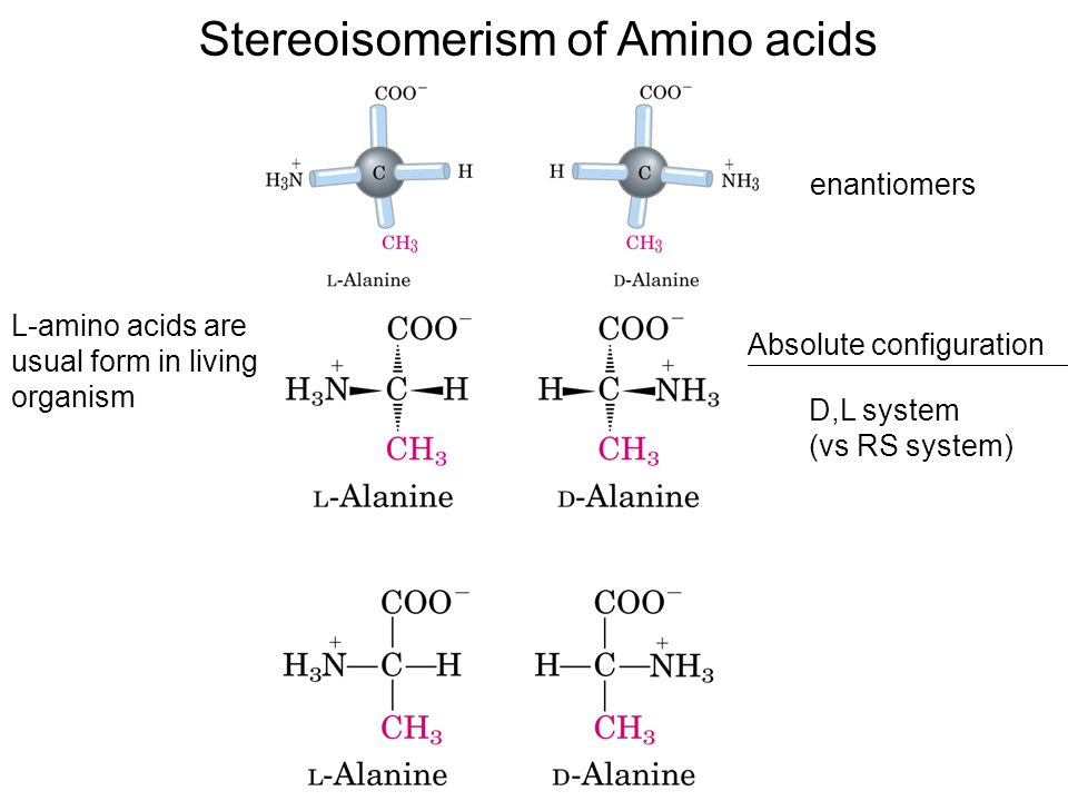 amino acids and how they relate Principles of biochemistry/amino acids and some other chemical component in addition to amino acids and they are called larger between less closely related.