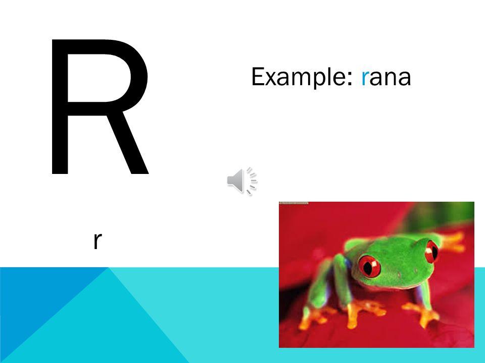 R r Example: rana