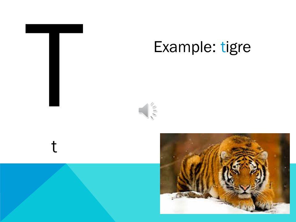 T t Example: tigre