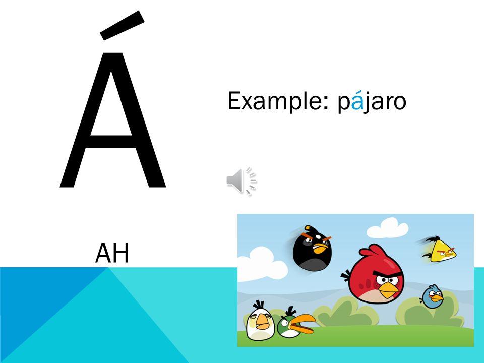 Á AH Example: pájaro
