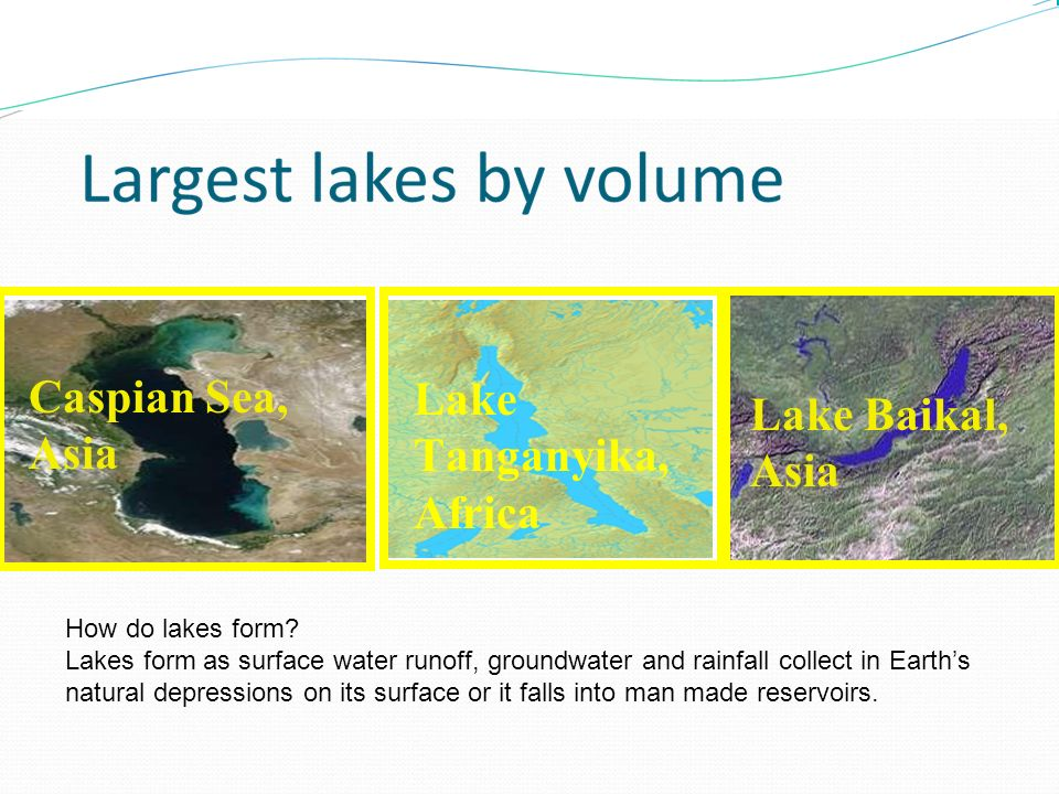 Freshwater Marine or Saltwater Aquatic Biomes. - ppt video online ...