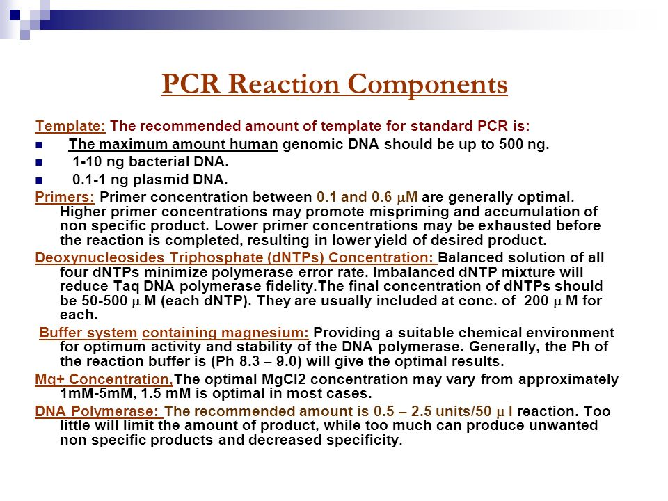how much template dna for pcr - 2013 polymerase chain reaction shakira sulehri ppt