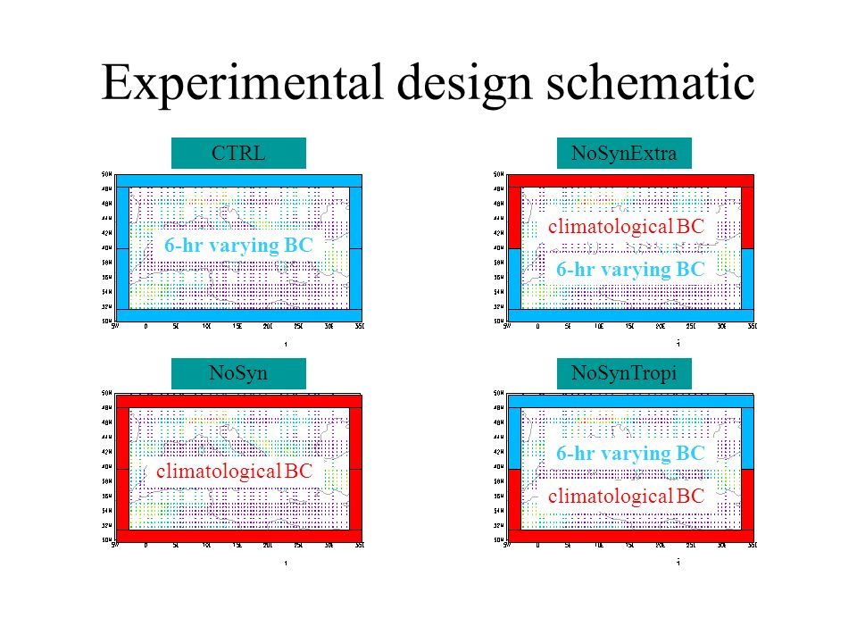 Experimental design schematic