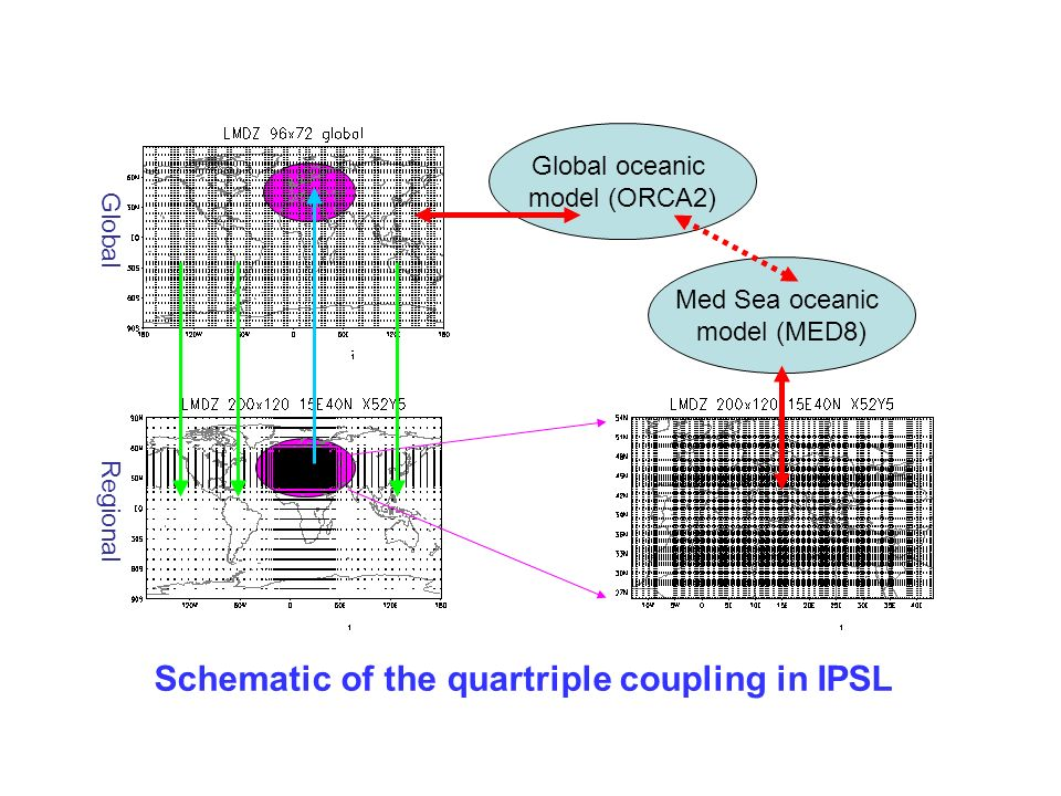 Schematic of the quartriple coupling in IPSL