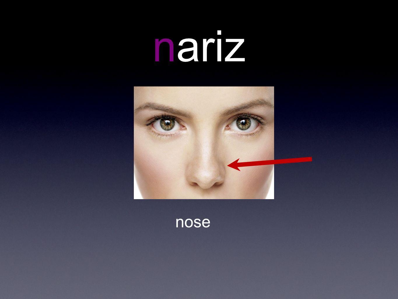 nariz nose
