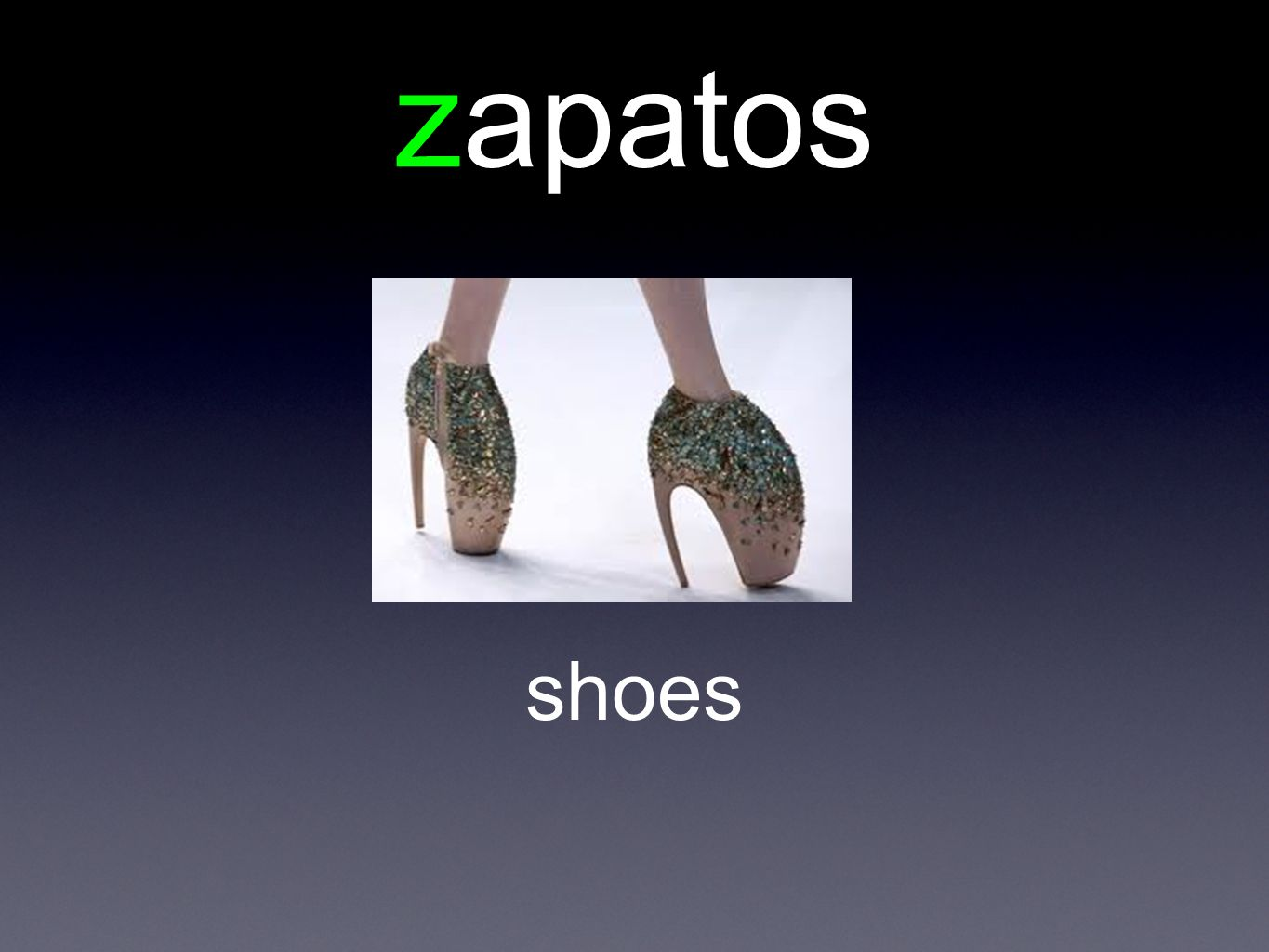 zapatos shoes