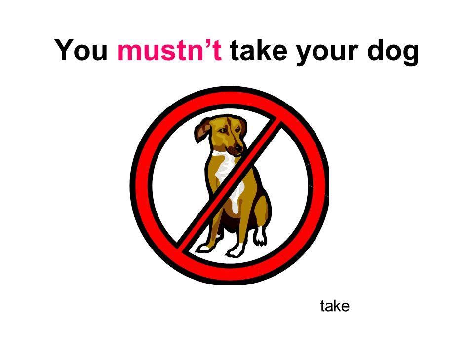 You mustn't take your dog