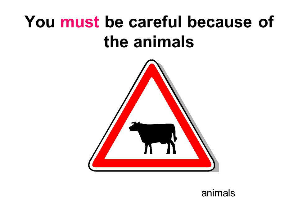 You must be careful because of the animals
