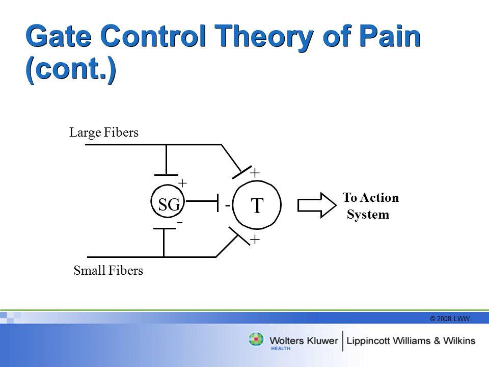 pain gate control theory pdf