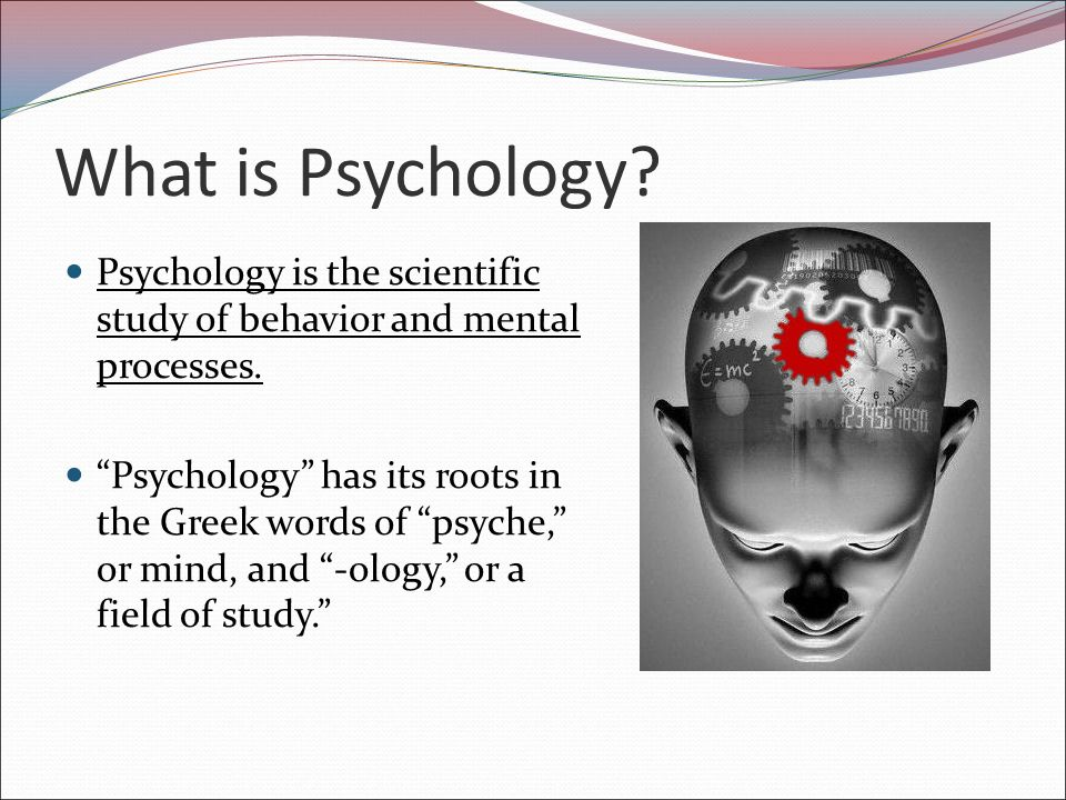 Psychology | Mind Brain Behavior