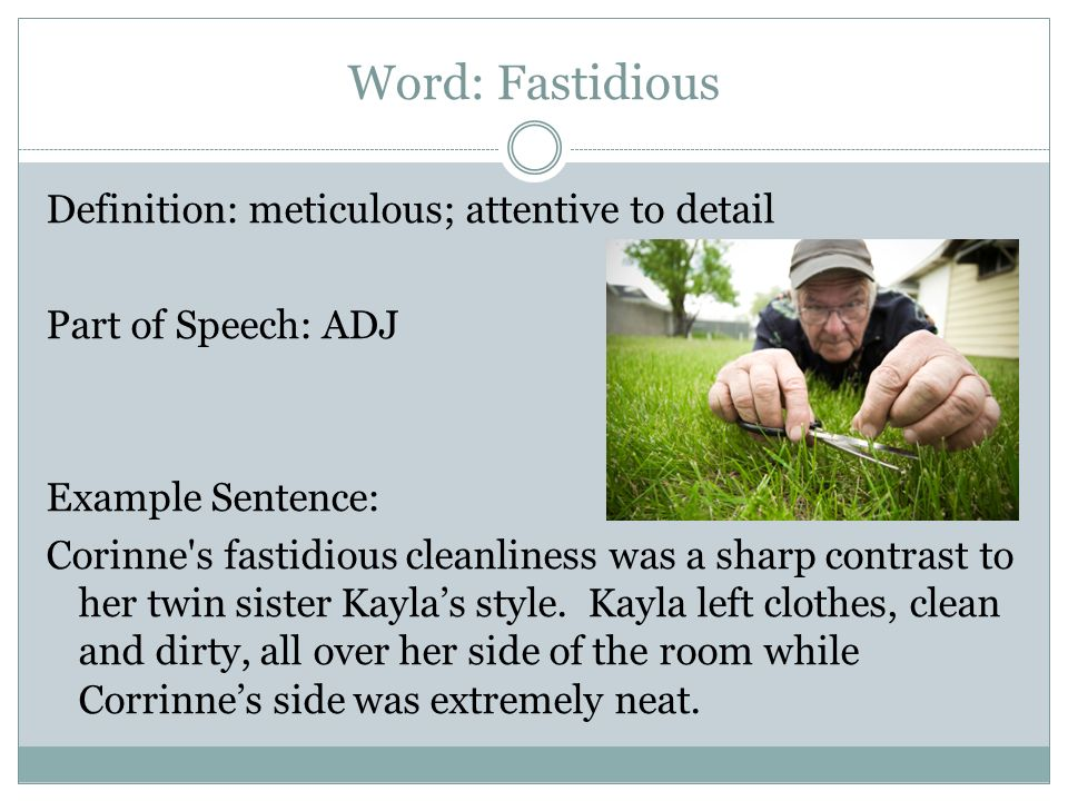 Word: Fastidious