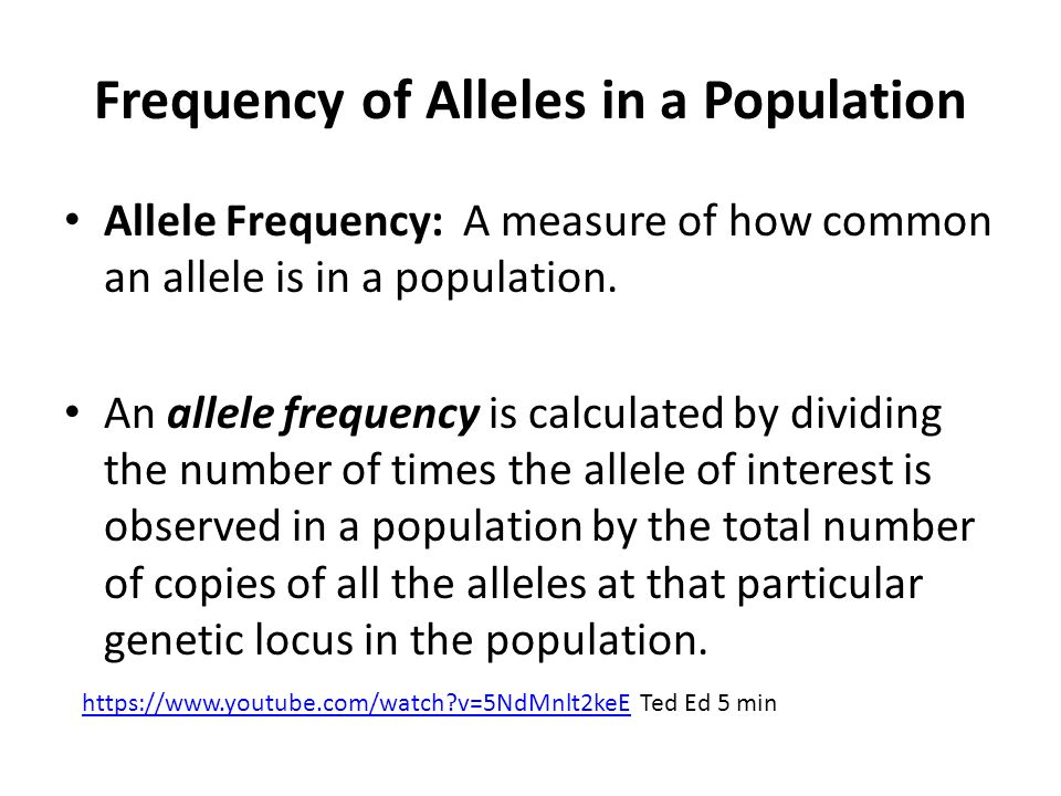 frequencies of alleles in a population Population genetics •how do genes behave in populations -the frequencies of all alleles will always add up to 1 (or 100% of the alleles) •a genotype frequency is the proportion of a population that has one genotype relative to.