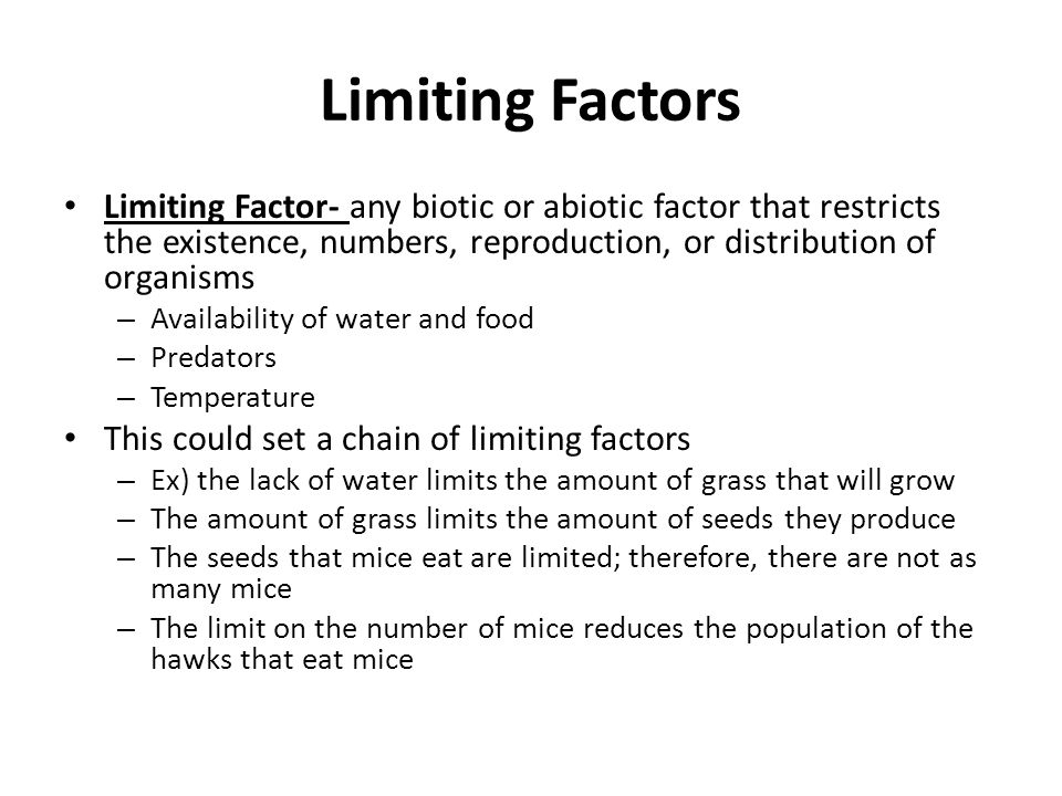 Food Availability And Temperature Can Be Biotic Factors