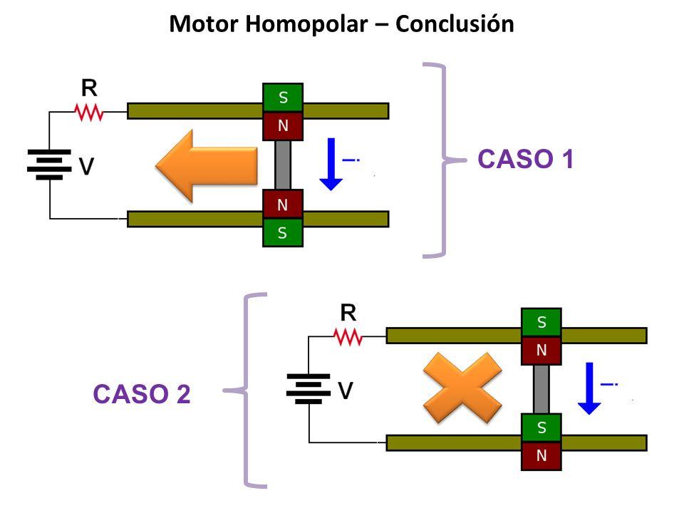 Motor Homopolar – Conclusión