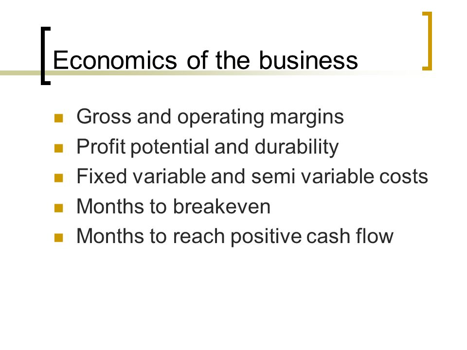 Business Economics Essay Examples