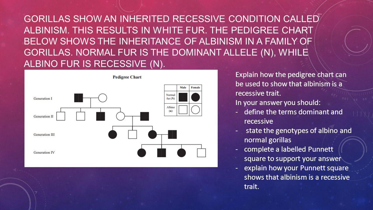 Genetic variation Revision. - ppt download