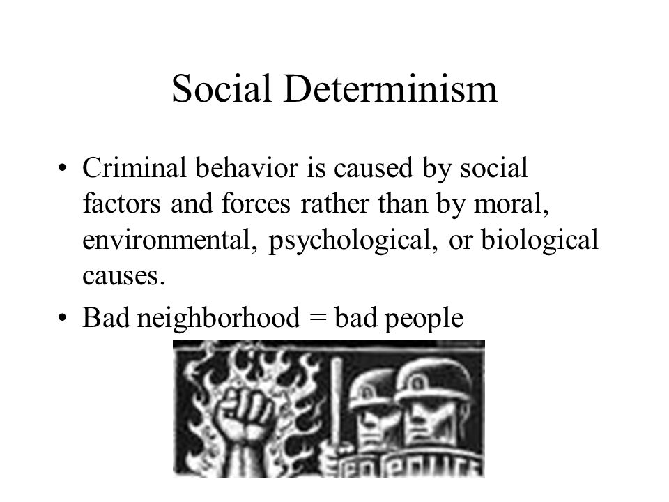 biological theories and criminal behavior Biological explanations for criminal behavior have gained importance in recent years advances in science and technology have permitted.