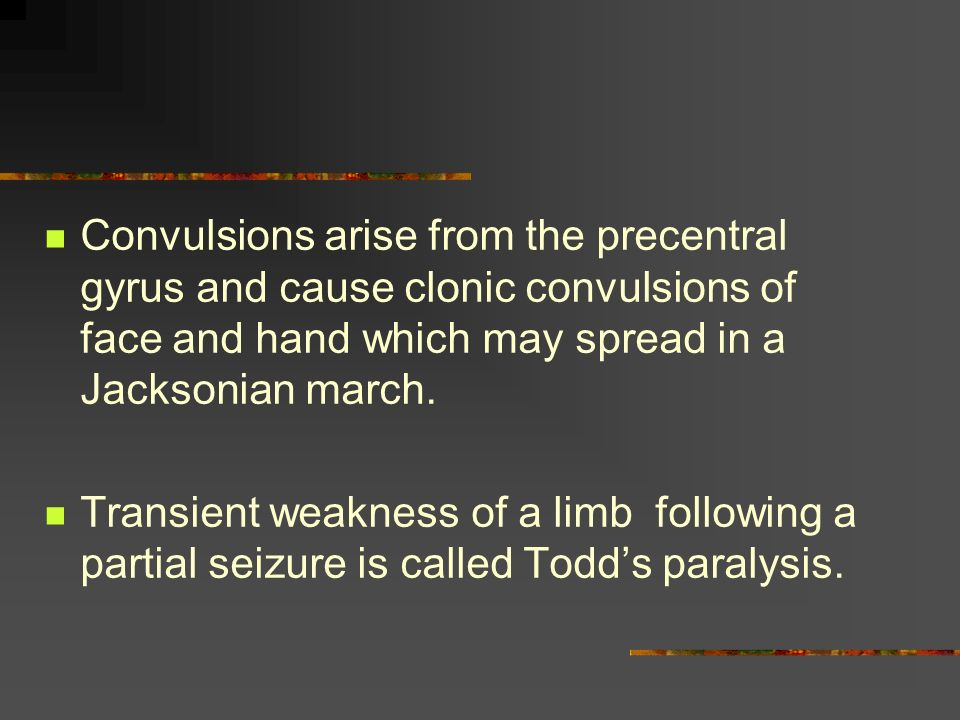 seizure disorders - definitions - classification - ppt download, Skeleton