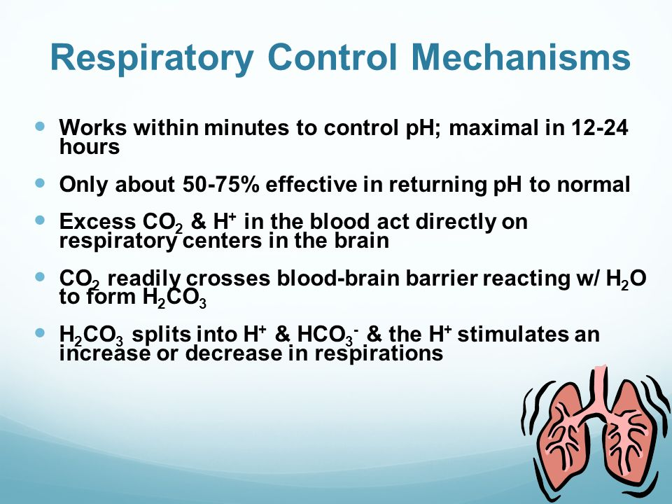respiratory system control mechanisms Objectives • define: • primary respiratory mechanism (prm) • secondary  respiratory mechanism  neurological control system for respiration – the core  link.