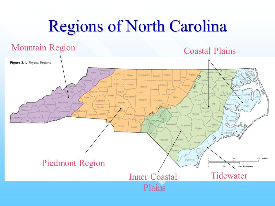 10799997 likewise Regions of virginia besides Appalachians likewise  together with 60844. on tidewater region map