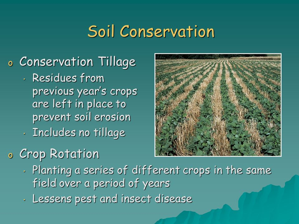 soil erosion and conservation The european society for soil conservation (essc) was founded on 4 th   supporting research on soil degradation, soil erosion and soil conservation.
