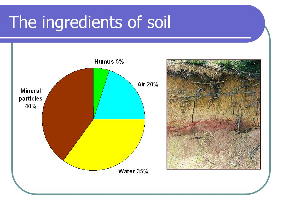 Soil our bread basket ppt video online download for What are the different layers of soil